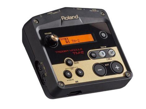 Roland TM 2