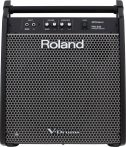 Roland PM-200 180W Personal Monitor
